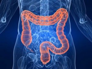 Colon Cancer & Colon Surgery - Alpine Surgical - Boulder CO